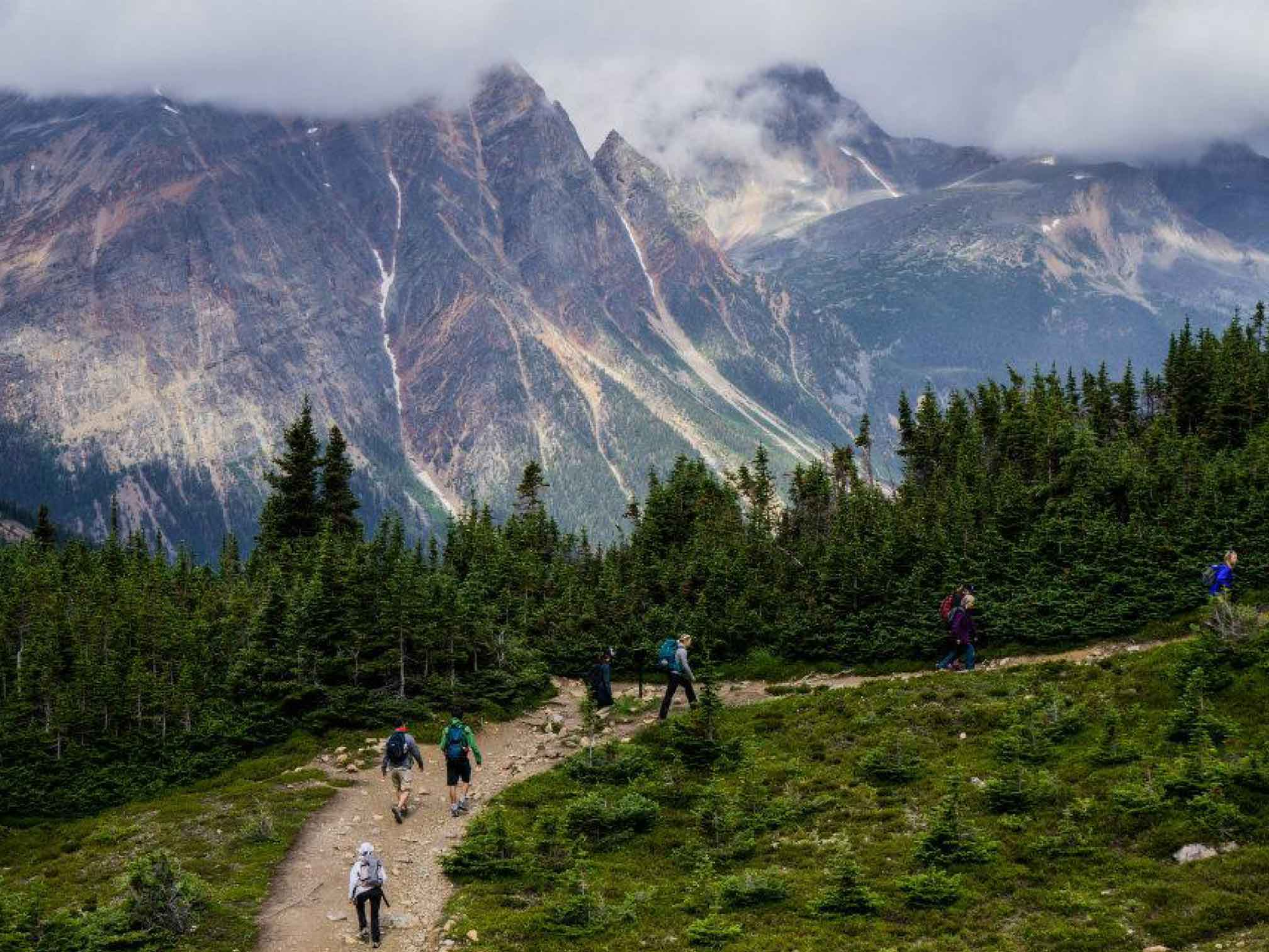 Jasper Summer Adventures: Guided Hikes by Friends of Jasper