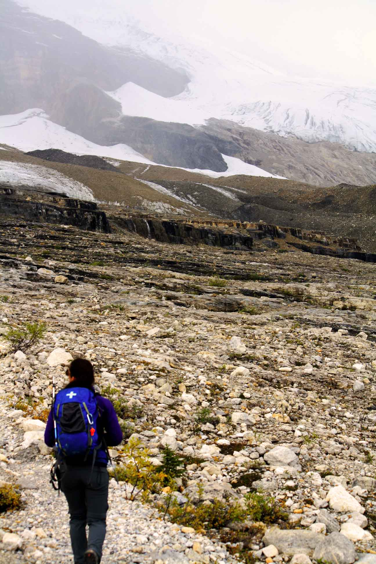 Glaciers on a guided hike with self propelled adventures