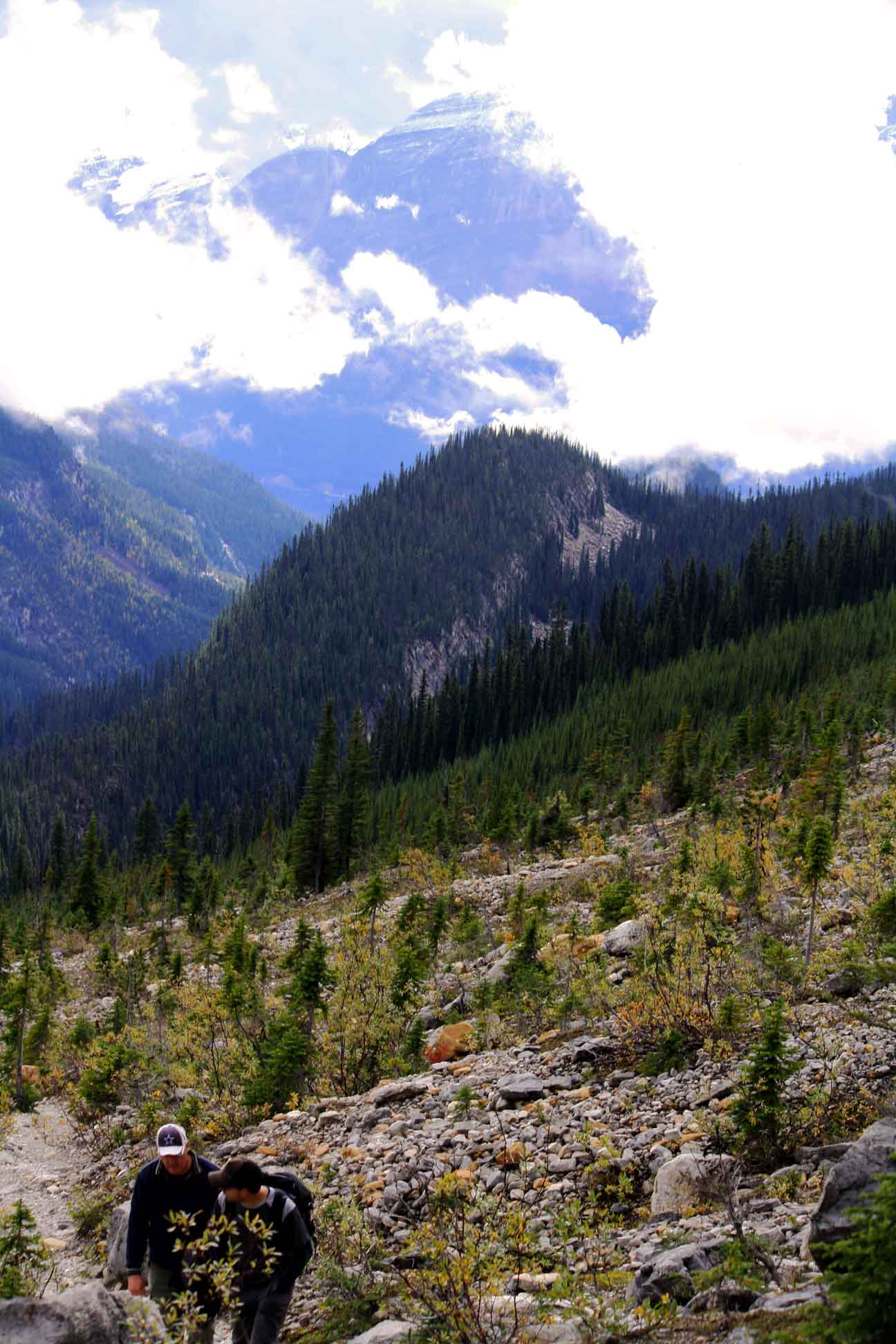 scenery on a guided hike with self propelled adventures